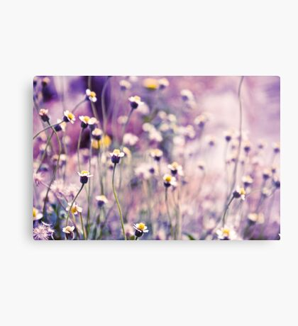 SOLD; Purple field: Explore; Got 7 Featured Work, One Explore Featured Metal Print