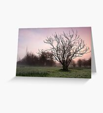Salisbury water meadows Greeting Card