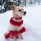 Princess - Santa's Little Helper by KanaShow