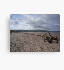 Driftwood - Ayrshire, Scotland Canvas Print
