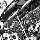 Carousel 55 by Joanne Mariol
