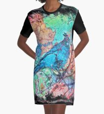The Atlas of Dreams - Color Plate 233 Graphic T-Shirt Dress
