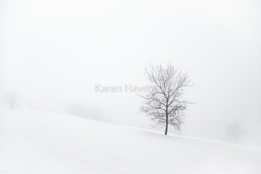 Misty Trees by Karen Havenaar