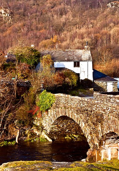 Cottage on the River Duddon by Trevor Kersley