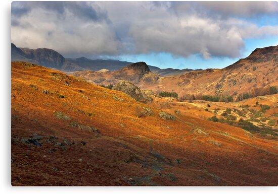 Langdale Valley by Trevor Kersley
