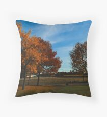 Fall in Northwest Indiana Throw Pillow