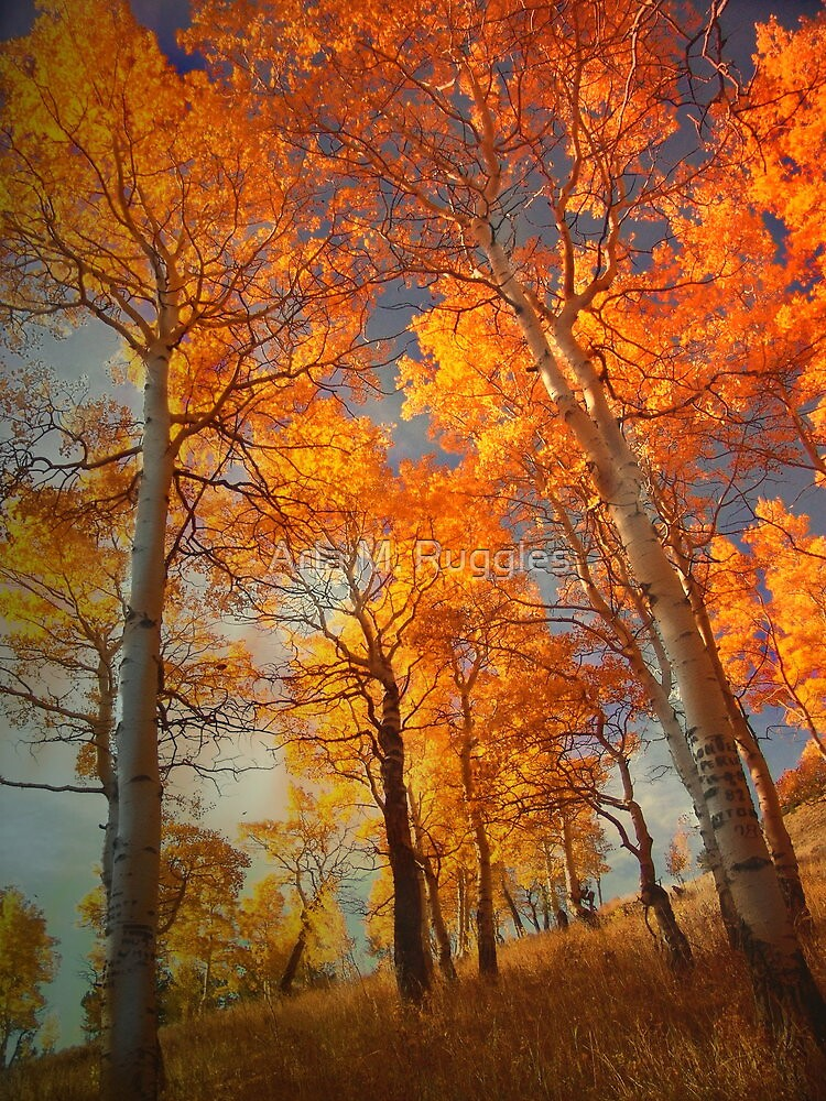 Aspiring To Glory by Arla M. Ruggles