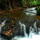 Hilo Stream by Russ Underwood