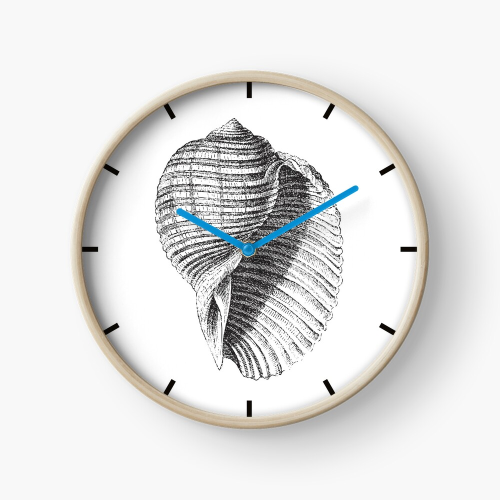 Seashell | Sea Shell | Conch Shell | Vintage Shells | Vintage Seashells | Vintage Sea Shells | Black and White | Clock