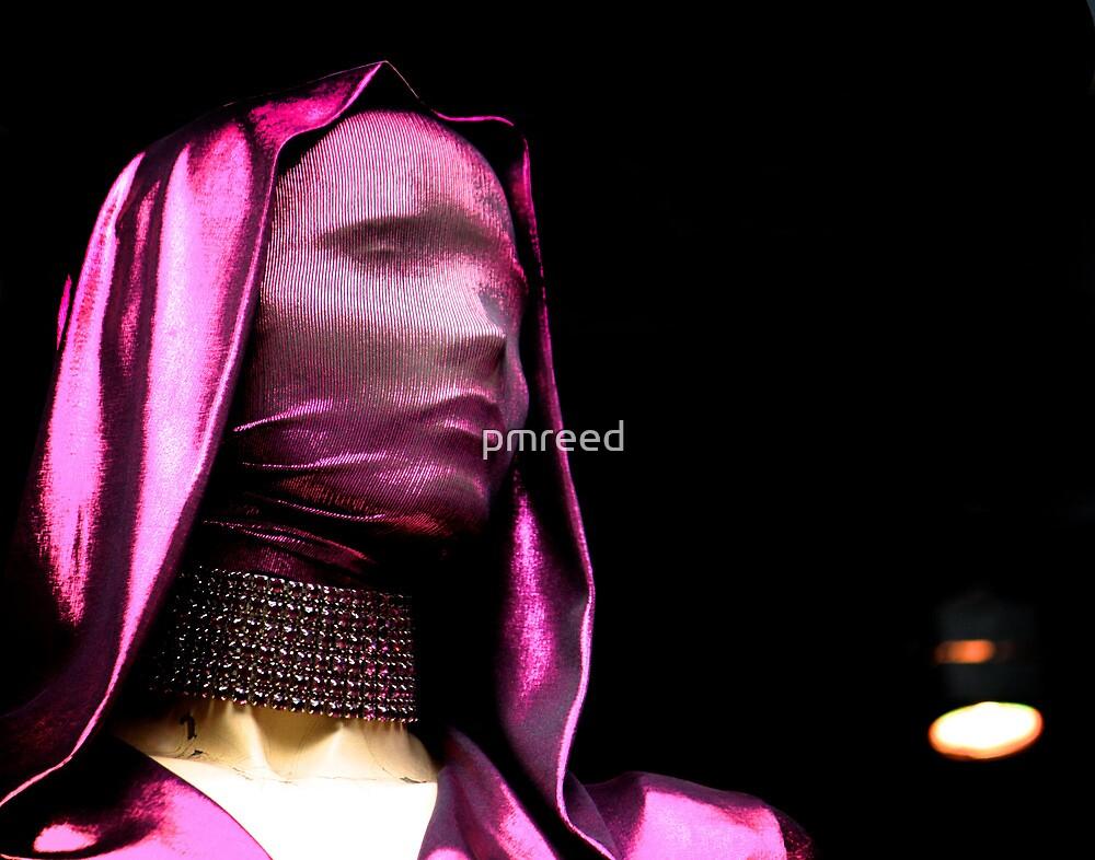A Thin Veil by pmreed