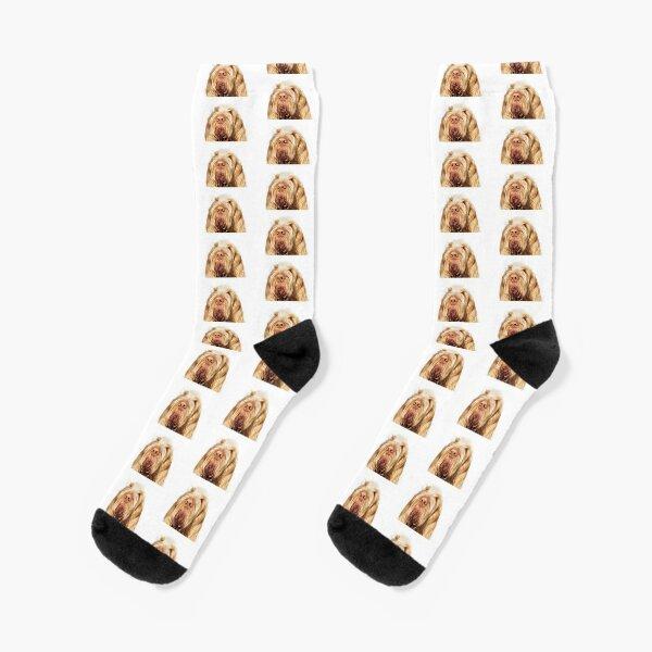 Orange and White Italian Spinone Dog Head Shot Socks