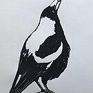 Magpie by Karen  Neal