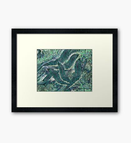 """""""Radient Swimmers"""" - Rising to the top to the sun Framed Print"""