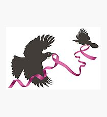Flying Tui with Pink Ribbon Photographic Print