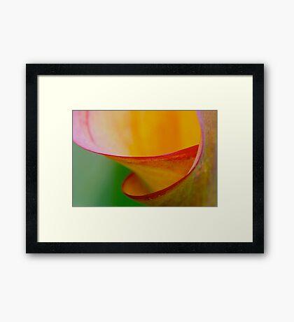 colour spiral Framed Print