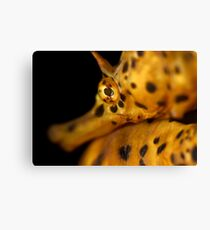 Dramatic Dof Canvas Print