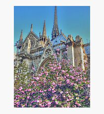 Charming Notre Dame Photographic Print