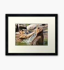 Playing in the pond Framed Print