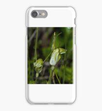 Snail Orchid, West Australia iPhone Case/Skin