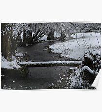Le Chaboussant en hiver Poster