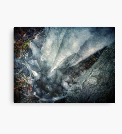 Melt and Re-freeze Canvas Print