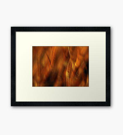 Remembering Autumn Framed Print