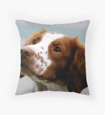 Beautiful Brittany Spaniel  Throw Pillow