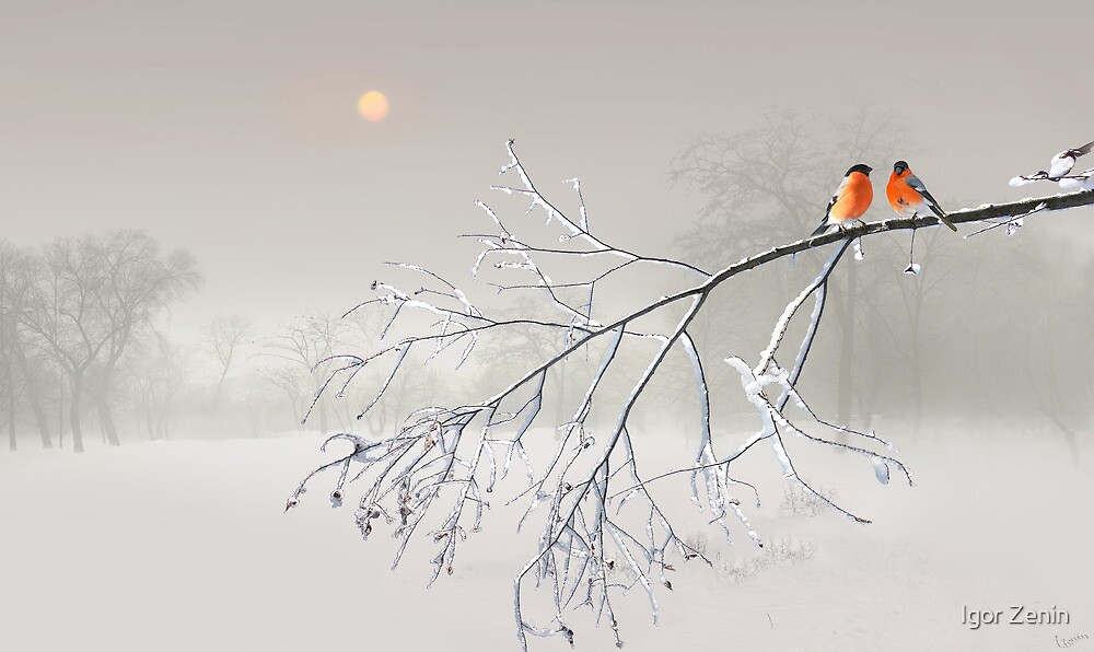 Whiteout by Igor Zenin