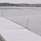 Frozen Dock. by Christopher Clark