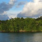 Islet at Marovo Lagoon by Reef Ecoimages