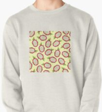 Dragon fruit on light background Pullover Sweatshirt