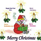 Merry Christmas, Happy New year 2011 by Bobby Dar