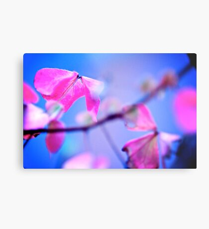 When Pink meet Blue: On featured: The Power of Simplicity Group Metal Print