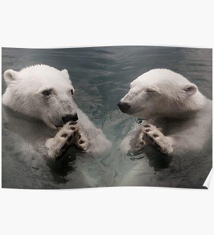 """Bear Prayer"" - polar bears look like they are praying Poster"