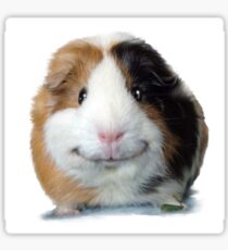 Keep Smiling with Angeelo the Guinea Pig! Sticker