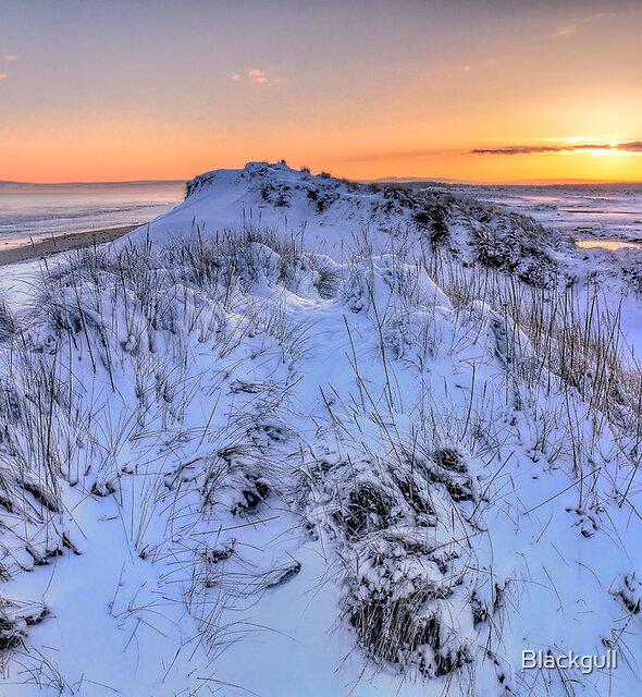 Frozen Dunes by Blackgull