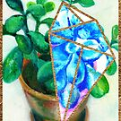 House Plants - Jade by ideateandcreate