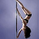 Pole Art  - Inverted D by hannahelizabeth