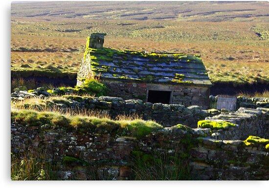 Cottage by Trevor Kersley