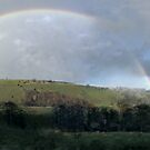 Rainbow at Rushley by Paul  Green