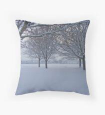 Exeter @ Winter Throw Pillow