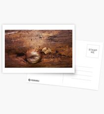 wood life Postcards