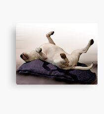 English Bull Terrier Dog, Watercolour Painting Style Art Print Canvas Print