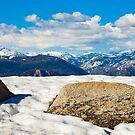 Sierra Nevada Spring by Nickolay Stanev