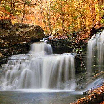 R. B. Ricketts Falls Under Fall's Golden Halo by ProfAudio