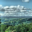 God's Own County - Nidderdale, Yorkshire  by Sandra Cockayne