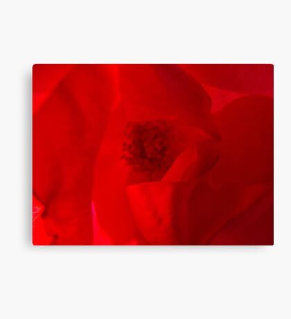 Better off Red Canvas Print