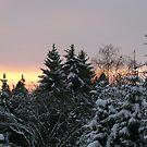 Christmas Sunset by Detlef Becher