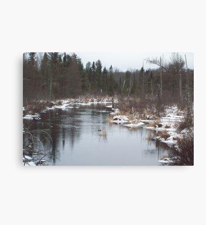AuSable River Grayling MI Canvas Print