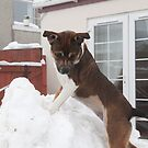 Megan climbing a mountie of snow  by Elaine123